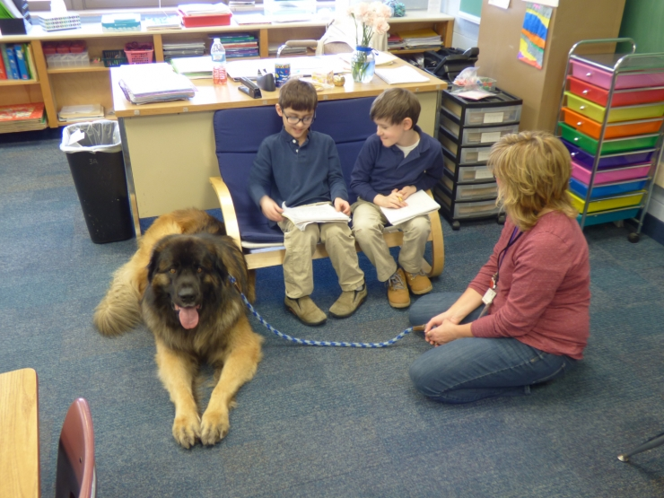 St. Jude School and Alliance of Therapy Dogs Form Partnership