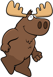 Camp Moose On The Loose